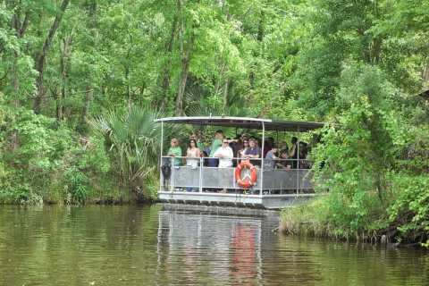 New Orleans: Bayou Tour in National Park