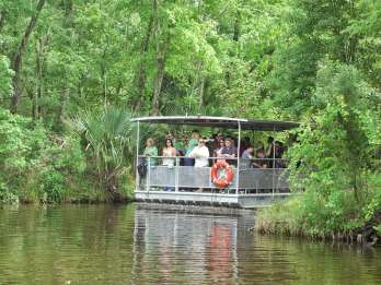 New Orleans: Bayou-Tour in Nationalpark
