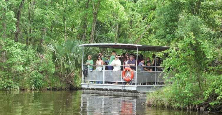 Nueva Orleans: tour del pantano en el parque nacional