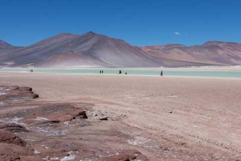 From Atacama: Salt Flats, Altiplanic Lagoons & Piedras Rojas