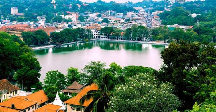 From Bentota: Kandy Tour with Tooth Temple & Gardens Visit