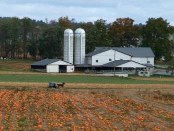 Lancaster: Amish Film-, House- und Farmland-Erfahrung