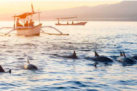 Lovina: Sunrise Dolphin Watching Small Group Tour