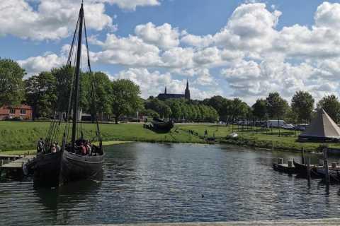Copenhagen: Small-Group Roskilde Day Trip