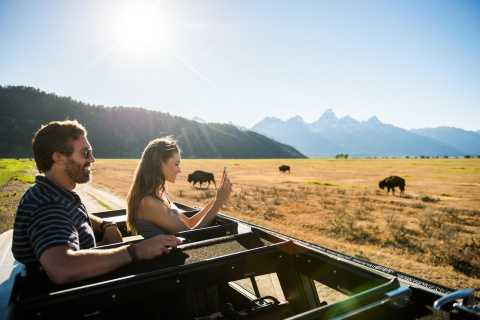 From Jackson: 4-Hour Eco Safari in Grand Teton National Park