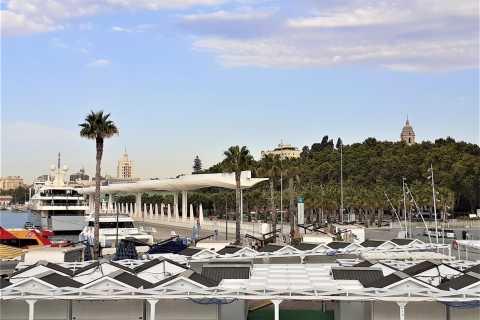 Malaga: 2-Hour Private Walking Tour