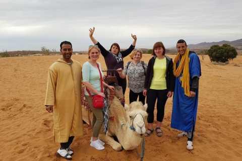 Massa Desert: dagtour met lunch
