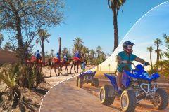 Palmeraie de Marrakech: Passeio de Camelo e Quadriciclo