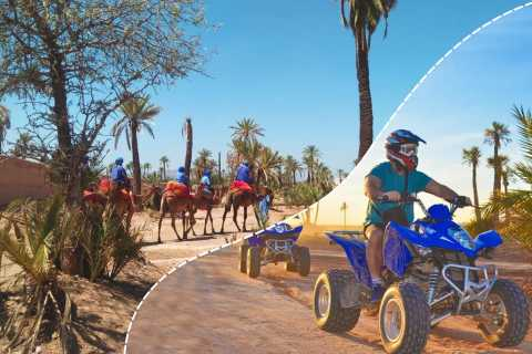 Marrakech Palmeraie: Camel Ride & Quad Bike Experience