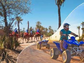 Marrakesch Palmeraie: Kamelritt und Quad-Bike-Erlebnis