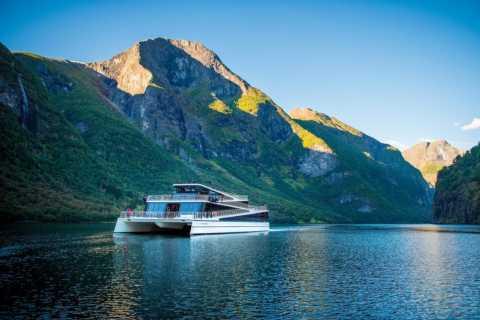 Bergen: Nærøyfjord Cruise and Flåm Railway to Oslo
