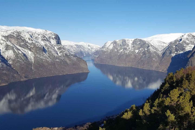 Bergen: RIB-Sognefjord-Safari & Flåmbahn - Private Tour