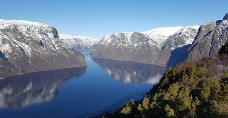 Bergen: RIB Sognefjord Safari and Flåm Railway Private Tour