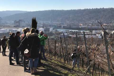 Stuttgart: Guided Glühwein Tour