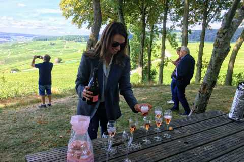 Paris: Private Day Trip to Champagne with 8 Tastings & Lunch