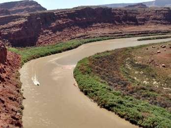 Moab: Bootsfahrt in ruhigem Wasser auf dem Colorado River