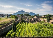 Neapel: Vesuv, Pompeji und Weingut Tour