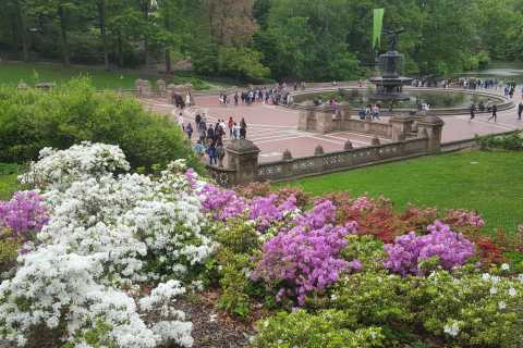 New York City: Secrets of Central Park South Walking Tour