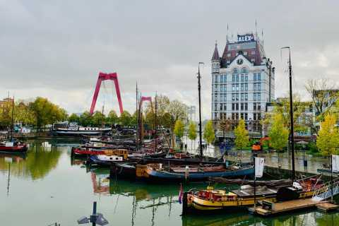 Rotterdam: Walking Tour and Harbor Cruise