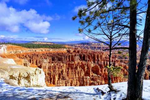 From Las Vegas: One-Way Luxury Shuttle to Bryce Canyon