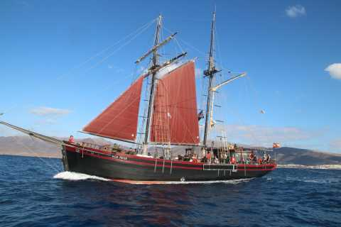 Fuerteventura: 4-Hour Pirate Sailing Adventure