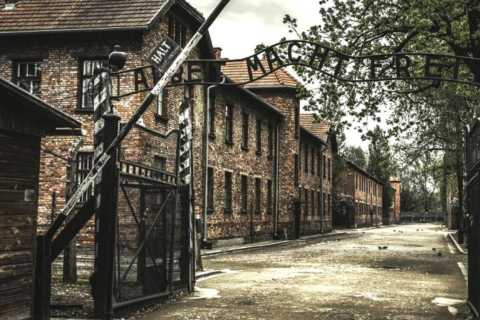 Krakow: Group Auschwitz and Salt Mine Tour