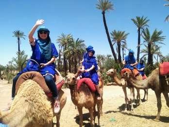 Marrakesch: Kamelritt im Palmenhain