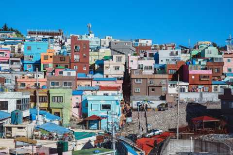 Busan: Private Car Charter Customized City Tour