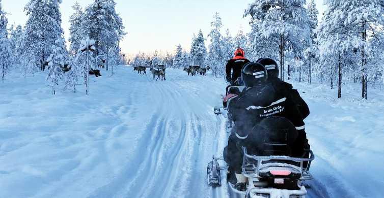 Rovaniemi: passeio de moto de neve com experiência na fazenda de renas