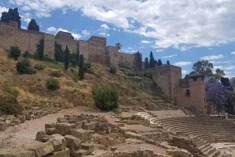 Malaga: Fast-Track Alcazaba and Moorish Spain Tour