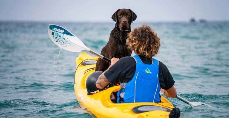 Santorini: aventura en kayak con picnic y puesta de sol