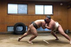Tóquio: Excursão de Prática Matinal de Luta Livre de Sumô