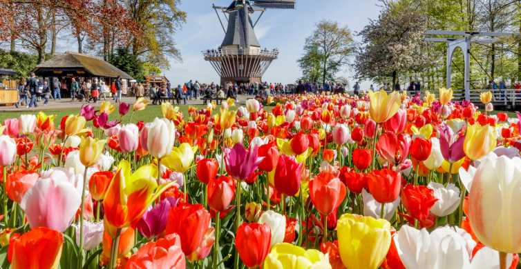 From Amsterdam: Keukenhof, Countryside Tour & 1 Attraction
