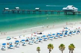Von Orlando: Tagesausflug nach Clearwater Beach mit Optionen