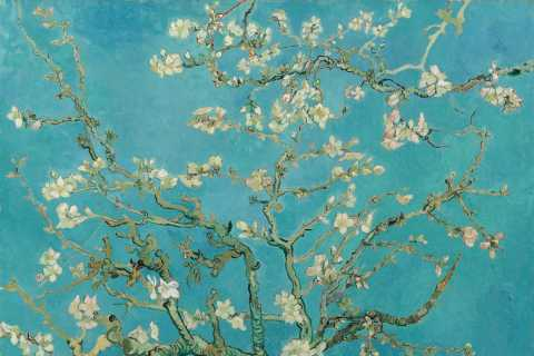 Amsterdam: Van Gogh Tour & Museum Entry Plus One Attraction