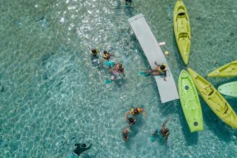 Cozumel: Jeep Tour & All Inclusive Tortugas Beach Adventure