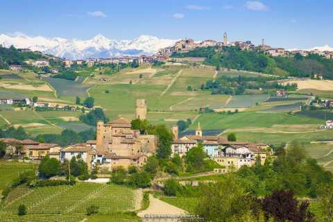 Von Alba: Barolo und Barbaresco Weintour