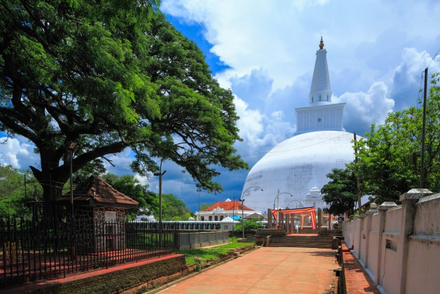 Van Dambulla: Sacred City of Anuradhapura Private Day Tour