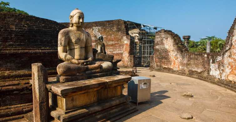 From Dambulla: Private Polonnaruwa and Minneriya Day Tour