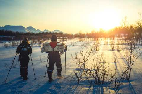 From Tromsø: Snowshoe Hiking Tour and Husky Camp Visit