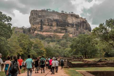 From Dambulla: Sigiriya Rock, Village, and Minneriya Tour
