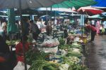 From Khao Lak: Market, 'Little Amazon', and Waterfalls