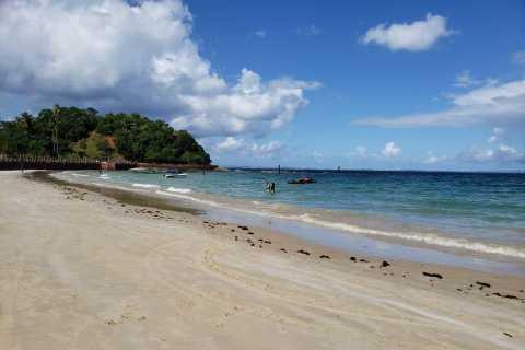 From Salvador: Ilha dos Frades Catamaran Trip