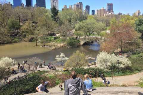 New York City: 2.5-Hour Central Park Highlights Walking Tour