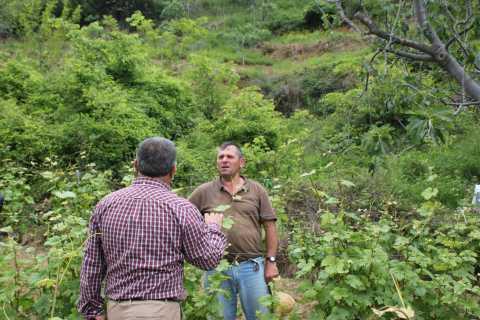 Berat: tour de cata de vinos Roshnik Village
