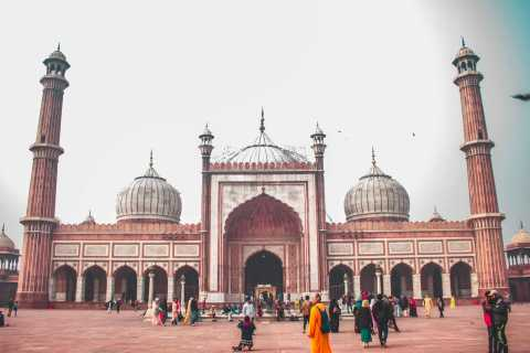 Delhi: Full-Day Private Tour, Qutb Minar, and Entrance Fees