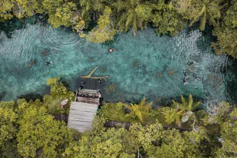 Bonito: Nascente Azul Lake Snorkeling & Activities