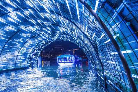 Amsterdam: Light Festival Boat Tour with Unlimited Drinks
