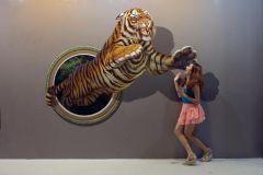 Chiang Mai: Ingresso Museu Art in Paradise