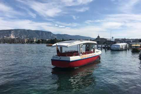 Ginevra: crociera ecologica di 35 minuti
